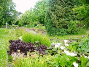 The Place for Plants East Bergholt